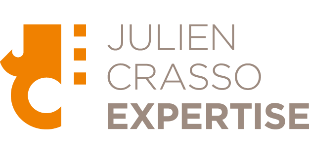 Julien Crasso Expertise
